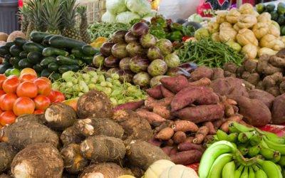 Fruits et légumes ont fait un cabas