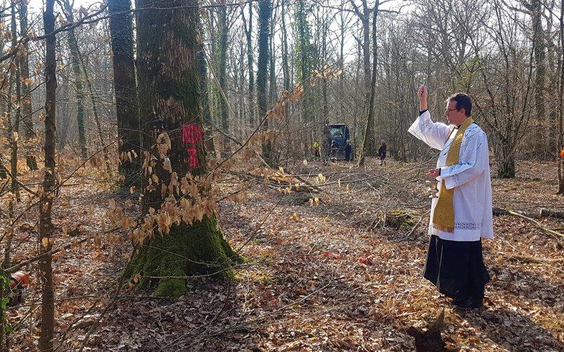 Trois chênes bénis pour une sainte flèche